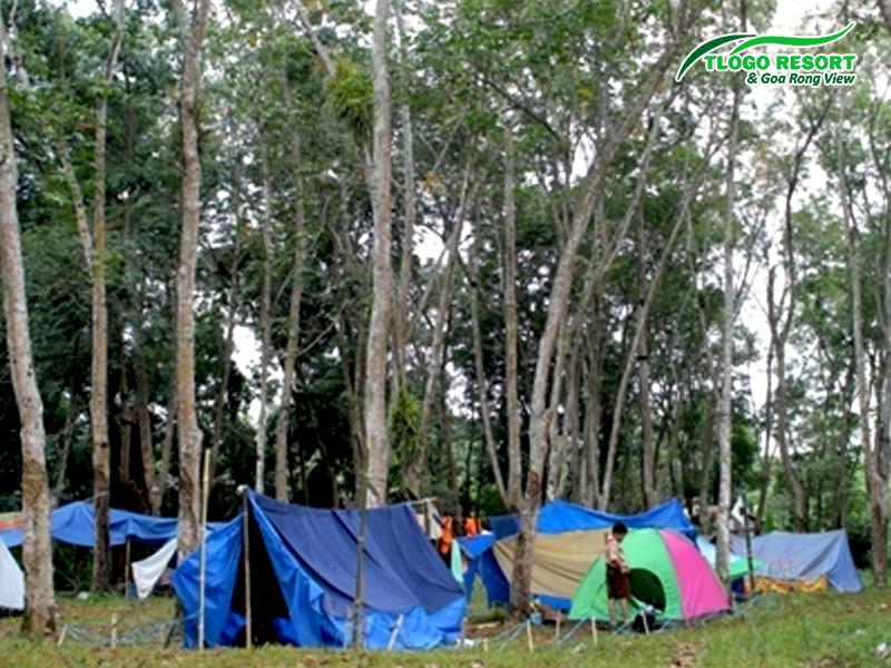 tlogo-resort-tuntang-camping-ground