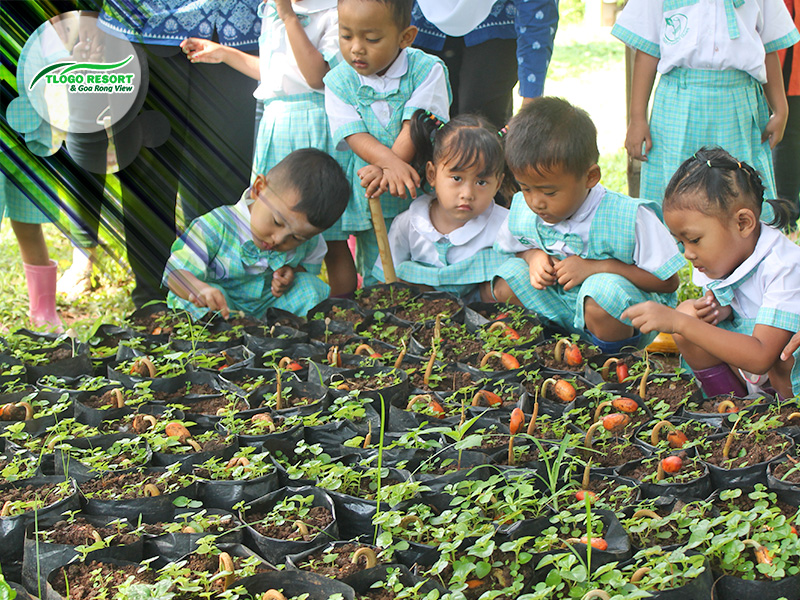 wisata-agro-tlogo-resort-web-support-develop-by-duaide-outbound-kids