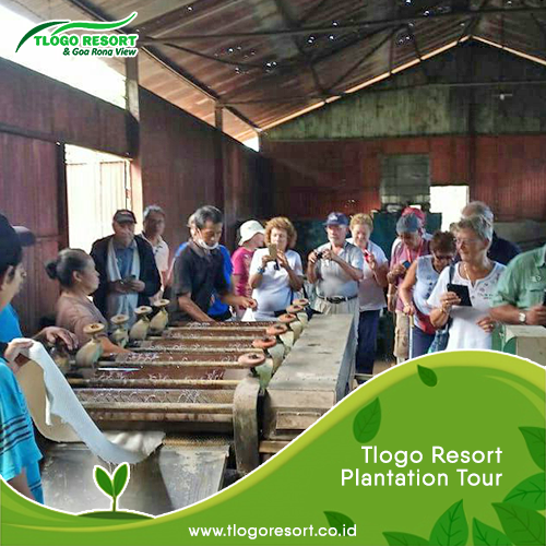 tlogo-resort-plantation-tour-guide-salatiga-goa-rong